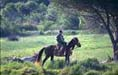 Agriturismo at Saturnia Grosseto: Horse Hiking