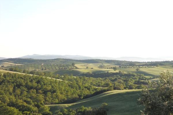 paesaggio02